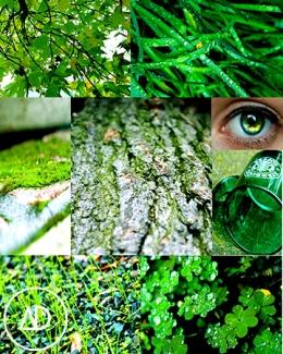digital-photo collage